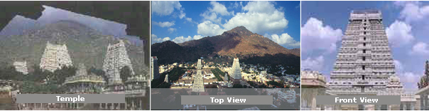Tiruvannamalai, Tiruvannamalai City, Tiruvannamalai District, Arunachaleswara temple, Sri Ramanasramam